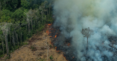 View of fires ravaging the Amazon rainforest.