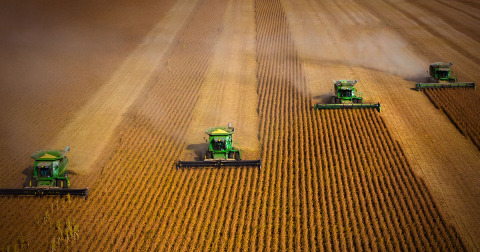 Large field, 4 green tractors harvesting